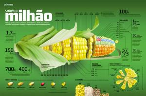 corn-stats